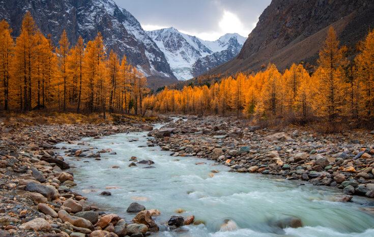 Отдых на Алтае осенью: как добраться