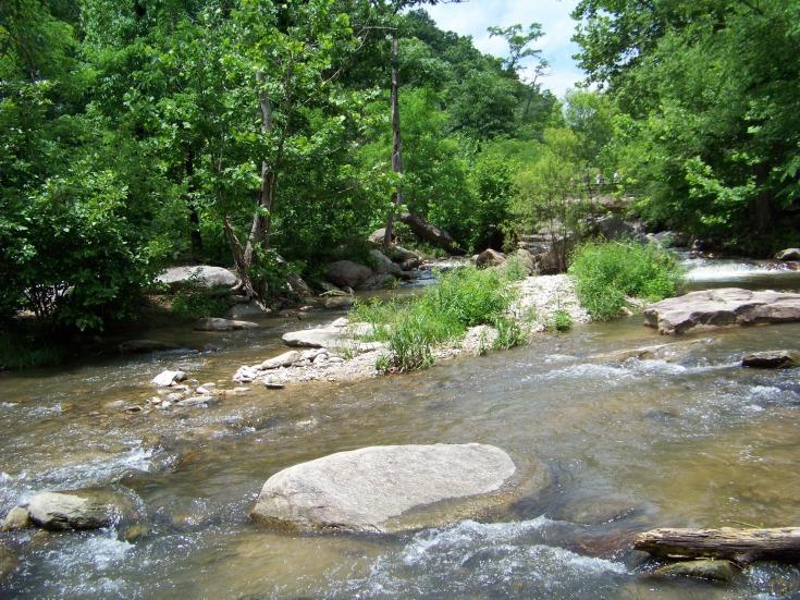 горная река фото (1)