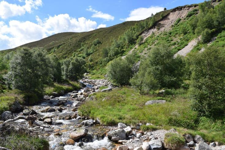 горная река фото (16)