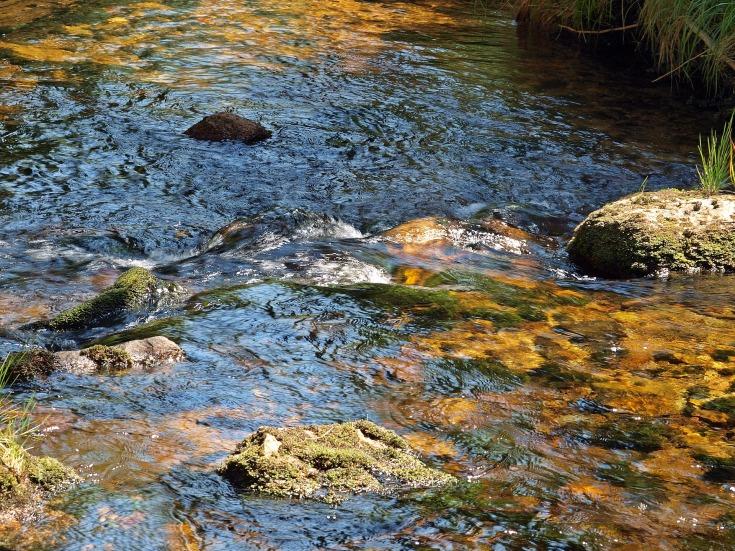 горная река фото (19)