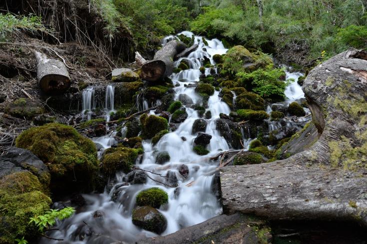 горная река фото (2)