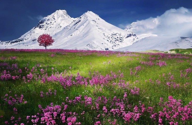 горы красивые фото (15)