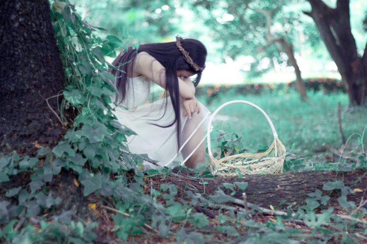 красивые фото леса (27)