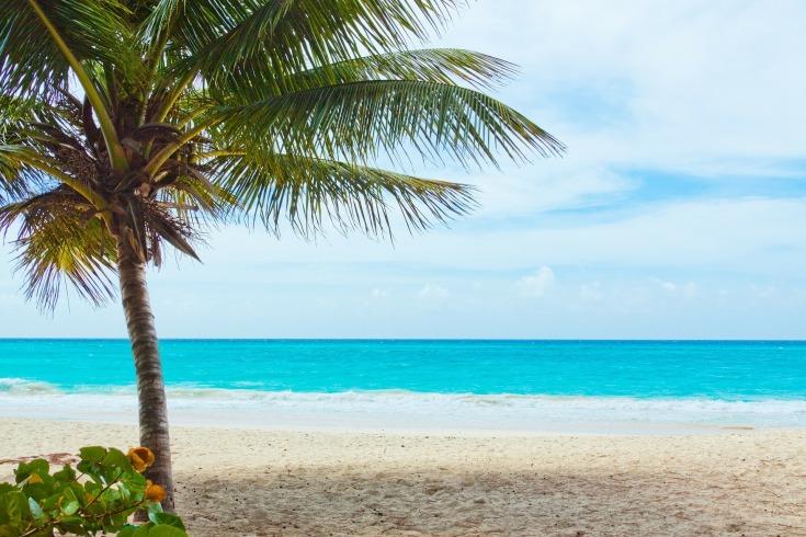 красивые фото берег моря (8)